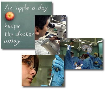 apple_a_day